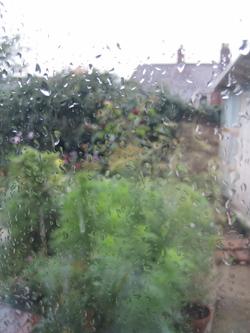Otober_rain